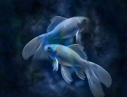 Рыбы. Гороскоп на август 2020 года